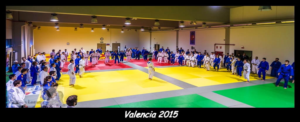 Valencia 2015 ╕ Paco Lozano-8107