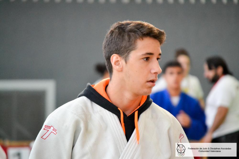 Amurrio 2015  (5)