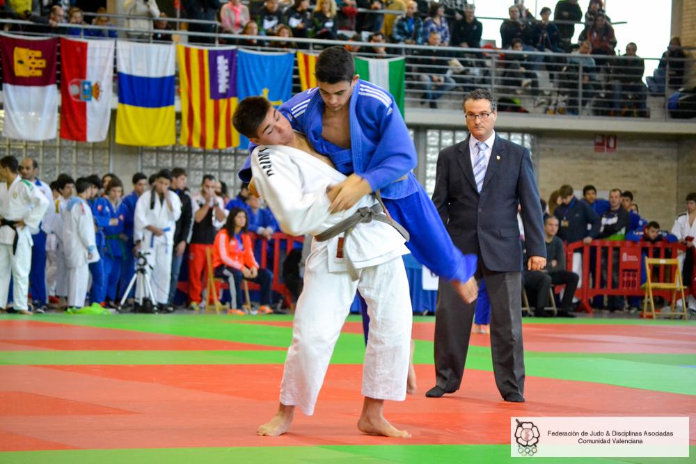 Pamplona 2015 (46)